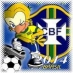 COPA DO MUNDO 2014 ONLY BRAZIL